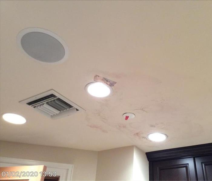 Salon Ceiling Mold Damage