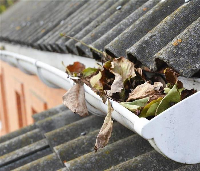 Home gutter with leaves